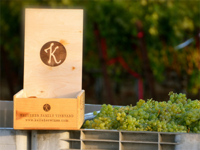 Contact Kelleher Family Vineyard